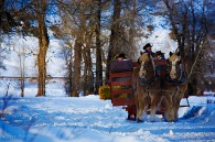 Horse Drawn Sleigh Ride Dinners