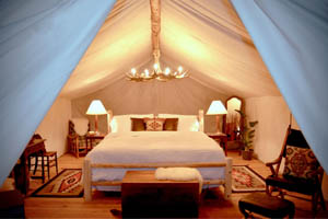 Collective_Signature_Luxury_Tent_200x300