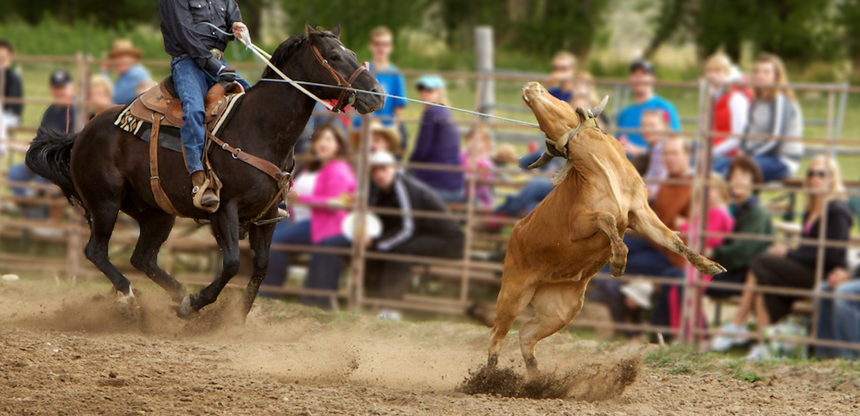 4 Eagle Ranch Rodeo